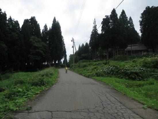 tsumari04_02